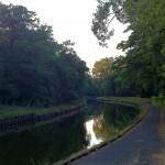 Canal de la Sarre